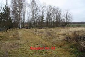Foto 6 Haus ideal für Großfamilie mit großem Grundstück in Lieberose