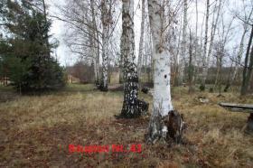 Foto 7 Haus ideal für Großfamilie mit großem Grundstück in Lieberose