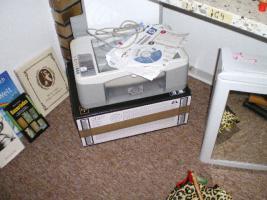 Foto 4 Haushaltsauflösung!Viele Kinderspielsachen, Porzellan u.s.w. günstig abzugeben