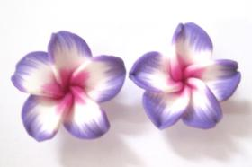 Hawaii Blumen Ohrstecker