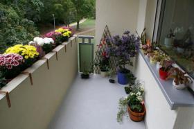 Foto 3 Helle 3 Zi-Wohnung mit Balkon + TOP Einbauküche Kaltmiete: 448 EUR