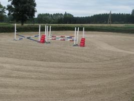 Helle Pferdeboxen mit Weiden frei