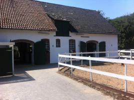 Foto 2 Helle gitterfreie Pferdeboxen in netter Stallgemeinschaft