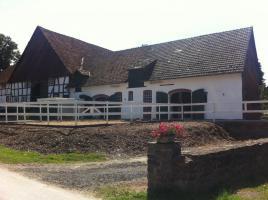 Foto 3 Helle gitterfreie Pferdeboxen in netter Stallgemeinschaft