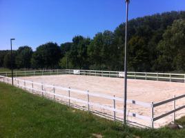 Foto 4 Helle gitterfreie Pferdeboxen in netter Stallgemeinschaft
