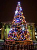 Hersteller der großen Weihnachtsbäumen
