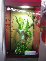 Foto 3 Hochterrarium beim Vivarienhaus