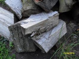Hochwertiges Ahorn Brennholz von Privat abzugeben