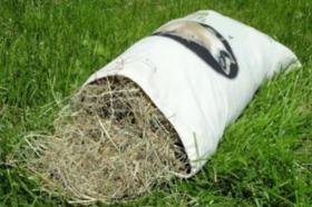 Hochwertiges Wiesenheu handverlesen 1 KG, Kaninchen, Meerschweinchen