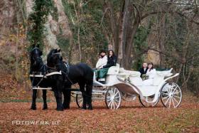 Hochzeitskutschen - Kutschfahrten - Kremserfahrten