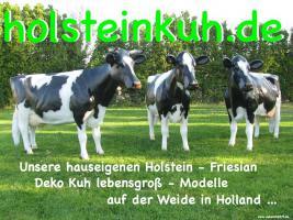 Holstein - Friesian Deko Kühe ...