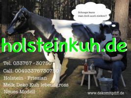 Foto 2 Holstein - Friesian Deko Kühe ...