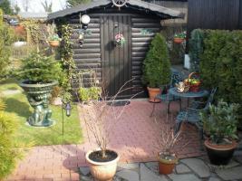 Foto 4 Holzmobilheim mit Wintergarten zu verkaufen