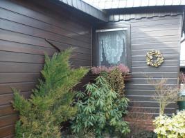 Foto 7 Holzmobilheim mit Wintergarten zu verkaufen
