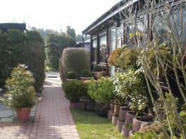 Foto 8 Holzmobilheim mit Wintergarten zu verkaufen
