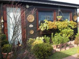 Foto 10 Holzmobilheim mit Wintergarten zu verkaufen