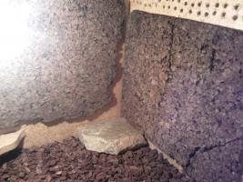 Foto 3 Holzterrarium sehr günstig abzugeben