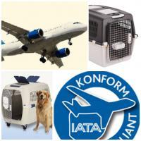 Foto 7 Hunde-Flugtransportboxen- Verkau&Verleih:Nord-Süd-Handel
