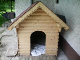 Hunde Hütte