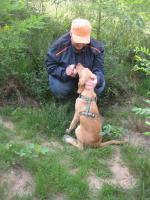 Foto 5 Hunde Outdoor - Sport u Agillity Cross Woorkshop Ratingen Samstags Sonntag