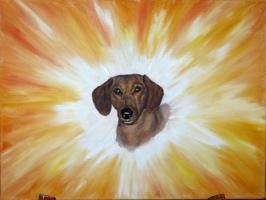 Hunde - Energiebild
