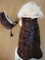 Foto 2 Hundebekleidung