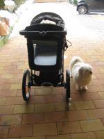 Foto 3 Hundebuggy