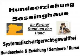 Hundeerziehung-Sessinghaus