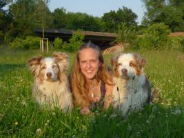 Hundeerziehung-Trickdogging-BH-Vorbereitung-Dogdance-Frisbee