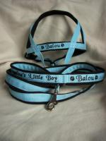 Foto 2 Hundehalsband Namenshalsband WM 2010 indiv. bestickt