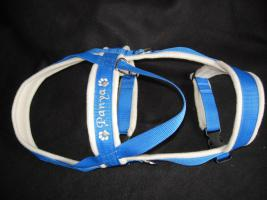 Foto 4 Hundehalsband Namenshalsband WM 2010 indiv. bestickt