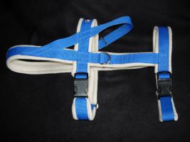 Foto 5 Hundehalsband Namenshalsband WM 2010 indiv. bestickt
