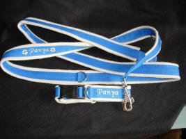 Foto 7 Hundehalsband Namenshalsband WM 2010 indiv. bestickt