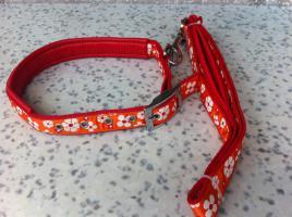 Hundehalsband - Set