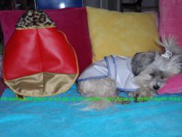 Foto 4 Hundemantel Prinzess in Gr. 33