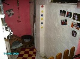 hundepension in mv laage g strow rostock von privat. Black Bedroom Furniture Sets. Home Design Ideas