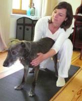 Foto 2 Hundephysiotherapie