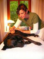 Foto 5 Hundephysiotherapie