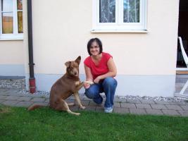 Hundeschule Harmony - Der Weg ist das Ziel