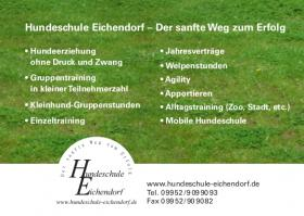 Foto 2 Hundeschule - Eichendorf