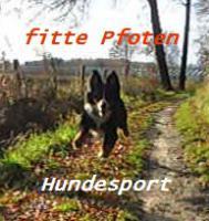 Hundesport/-beschäftigung