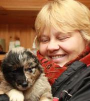 Foto 2 Hundetraining einmal anders...