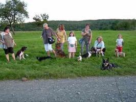 Foto 11 Hundetraining einmal anders...