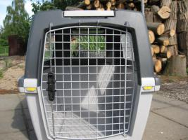 Foto 2 Hundetransportbox-Gulliver 5