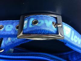 Foto 2 Hundhalsband - Set mit Leine