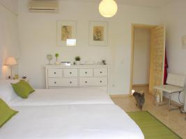 Foto 6 ''Ibiza Landhaus'' gelegen in der Region von St. Carlos in Strandnähe