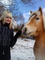 Ich suche ein Pferd