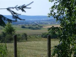 Foto 2 Idyllisches WE-Grundstück im Südharz