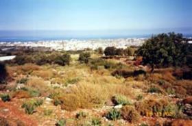 Ihr Baugrundstück nahe Malia/Griechenland