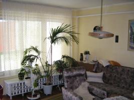 Foto 5 Immobilie in Ungarn; Nähe Thermalbad und österreichische Grenze!